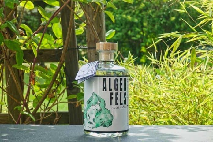 Eine Flasche des Algenfels Gins